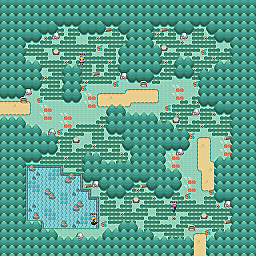 Twigged Path Game Map for Pokemon Online Players Route Order: 505