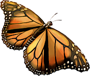 [Image: 1275-Monarch.png]