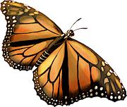 [Image: 1275-Monarch.png]