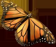 [Resim: 1524-Monarch.png]